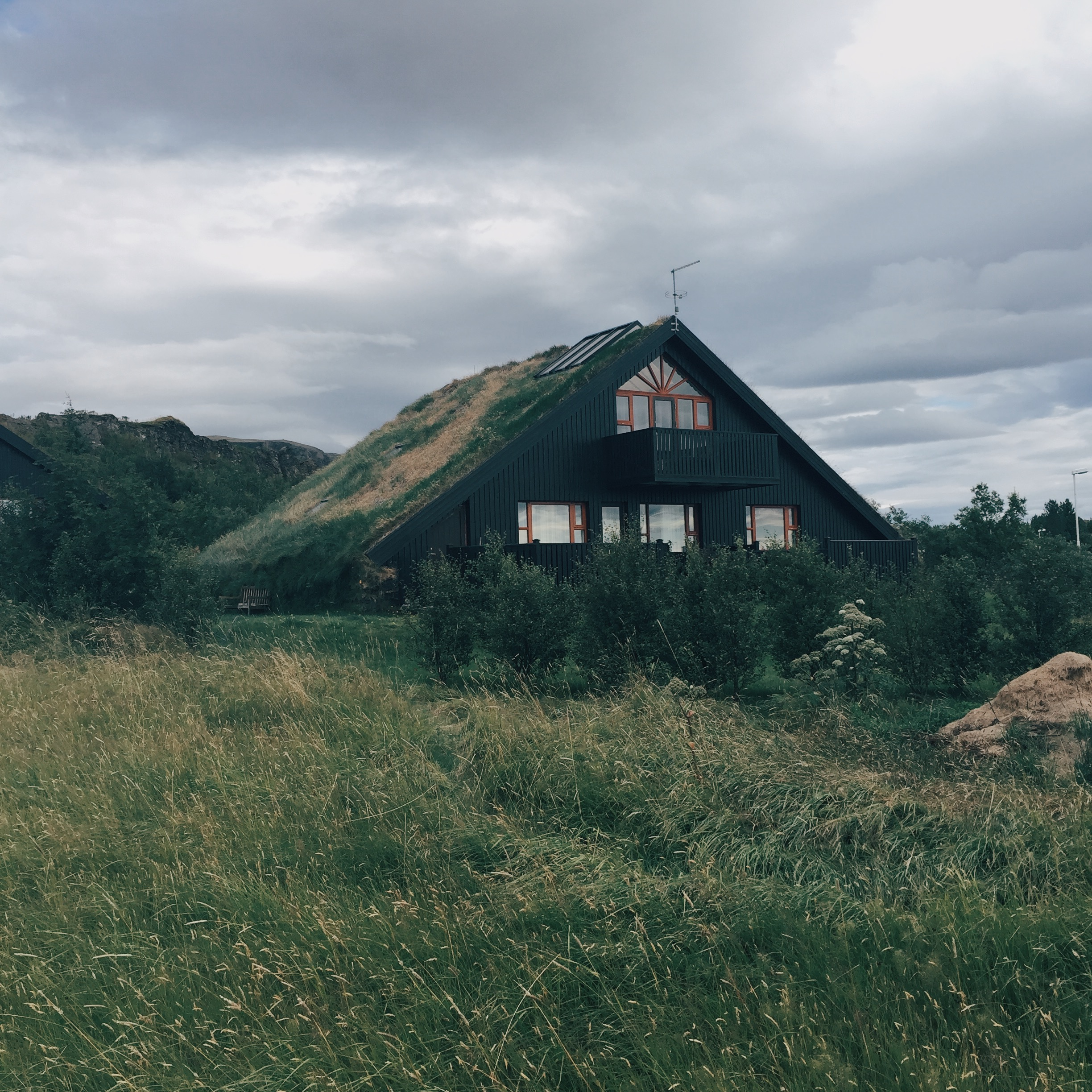 truf_roof_iceland